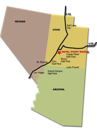 RPR Map
